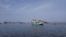 Navegando a las Islas Ballestas.