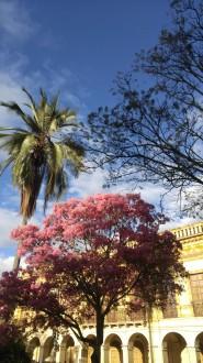 Plaza de Abdón Calderón.