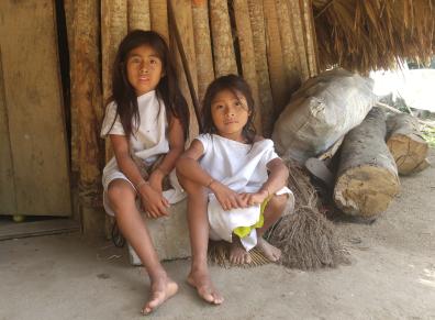 Niños Indígenas Koguis y Wiwas.