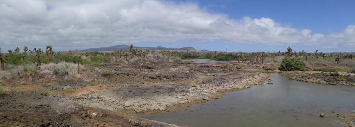 Laguna en Garrapatero en Santa Cruz.