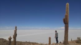 Vista del Salar de Uyuni desde la Isla Incahuasi.