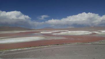 Reserva de Fauna Andina Eduardo Avaroa. Laguna Colorada.