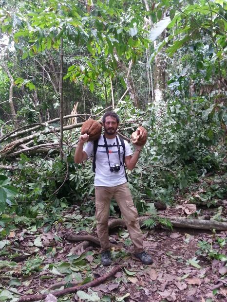 Fruto. Parque Nacional Corcovado.