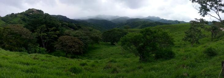 Bosque nuboso.