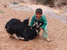 Niño pastor beduino en Petra.