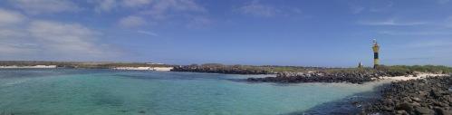 Punta Suárez.