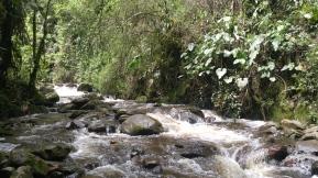 Ríos camino a Acaime.