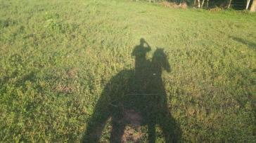 Sombras a caballo.
