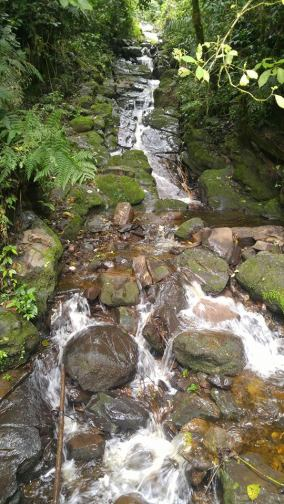 Camino a la cascada Gocta.