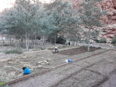 Campesinos en Garganta del Dades.