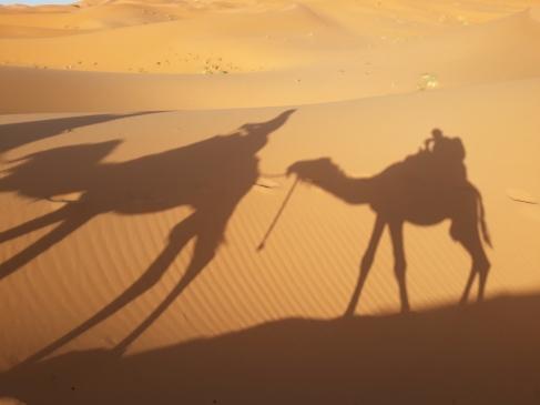 Sombras en la arena.